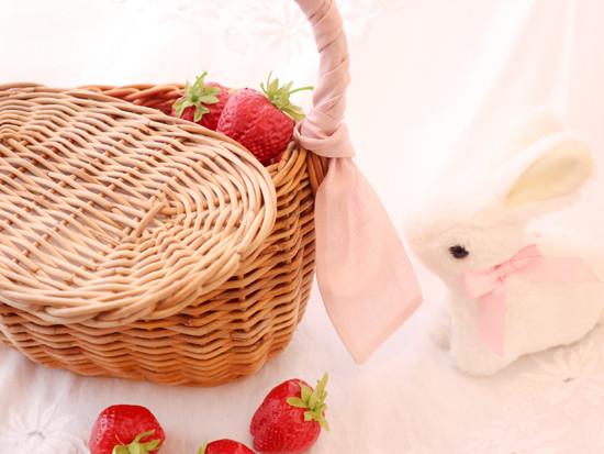 blog_bunny2